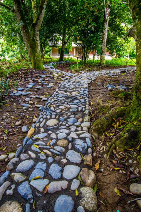 Narrow Cobblestone Path in Bolivia by a World Race Squad