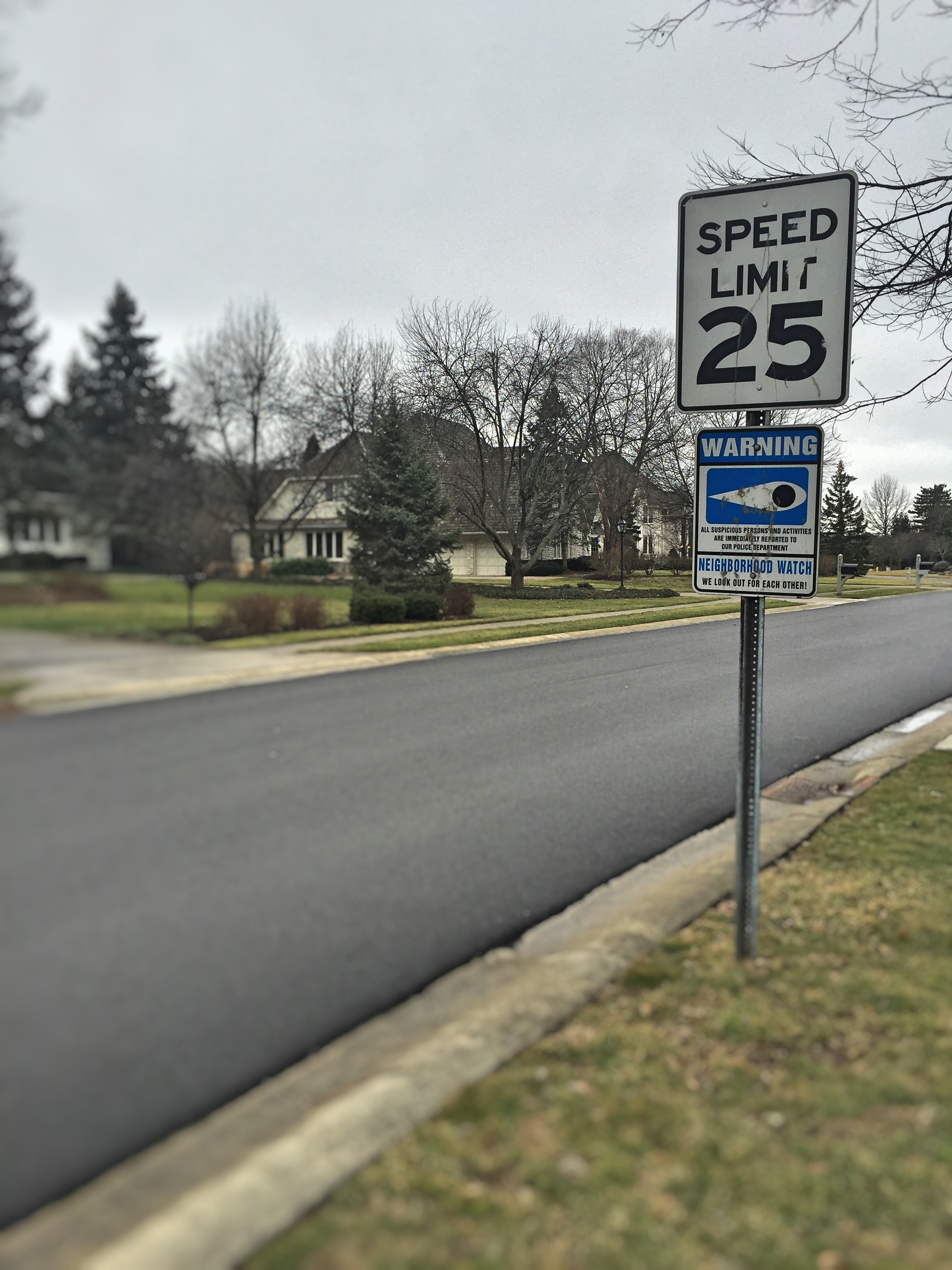 Speed Limits are Meant to be Obeyed